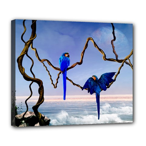 Wonderful Blue  Parrot Looking To The Ocean Deluxe Canvas 24  X 20   by FantasyWorld7