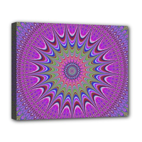 Art Mandala Design Ornament Flower Deluxe Canvas 20  X 16   by BangZart