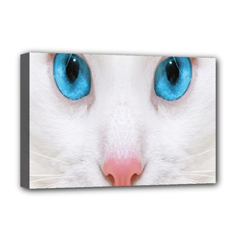 Beautiful White Face Cat Animals Blue Eye Deluxe Canvas 18  X 12   by Mariart