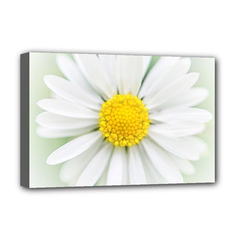 Art Daisy Flower Art Flower Deco Deluxe Canvas 18  X 12   by Nexatart