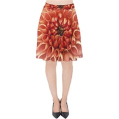 Dahlia Flower Joy Nature Luck Velvet High Waist Skirt by Nexatart