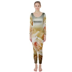 Roses Vintage Playful Romantic Long Sleeve Catsuit by Nexatart