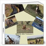 Africa 2017 - 12x12 Photo Book (20 pages)