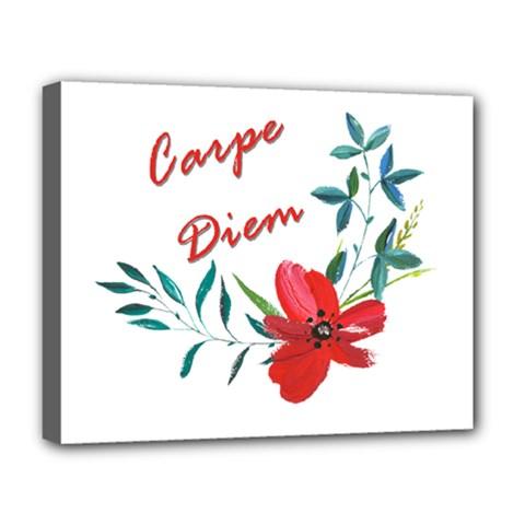 Carpe Diem  Deluxe Canvas 20  X 16   by Valentinaart