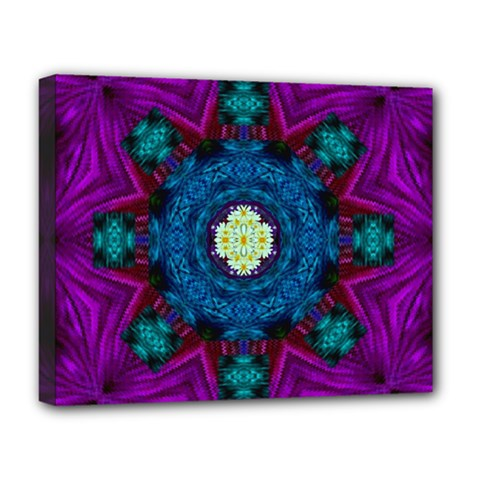 Sunshine Mandala And Fantasy Snow Floral Deluxe Canvas 20  X 16   by pepitasart