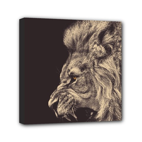 Angry Male Lion Mini Canvas 6  X 6  by Celenk