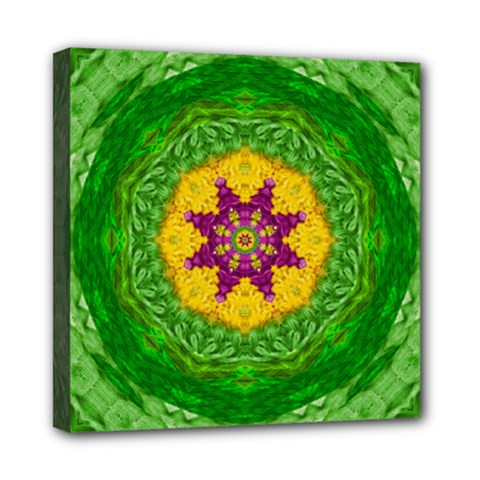 Feathers In The Sunshine Mandala Mini Canvas 8  X 8  by pepitasart