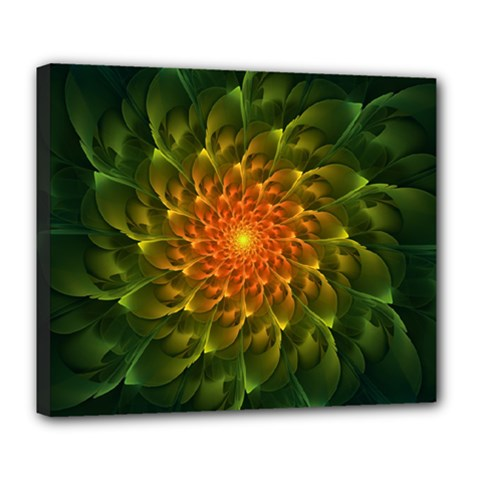 Beautiful Orange Green Desert Cactus Fractalspiral Deluxe Canvas 24  X 20   by jayaprime