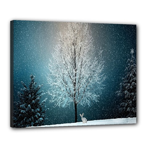 Winter Wintry Snow Snow Landscape Canvas 20  X 16  by Celenk