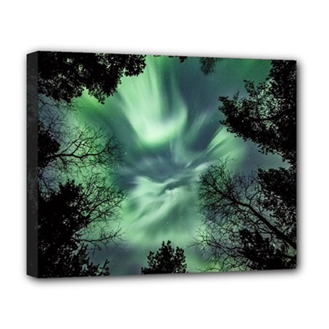 Northern Lights In The Forest Deluxe Canvas 20  X 16   by Ucco