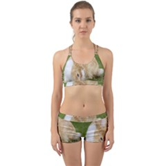 Beautiful Blue Eyed Bunny On Green Grass Back Web Sports Bra Set by Ucco