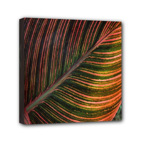 Leaf Colorful Nature Orange Season Mini Canvas 6  X 6  by Celenk