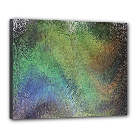 Frosted Glass Background Psychedelic Canvas 20  X 16  by Celenk