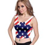 Patriotic Usa Stars Stripes Red Crop Top