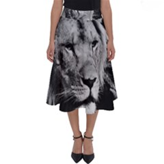 Africa Lion Male Closeup Macro Perfect Length Midi Skirt