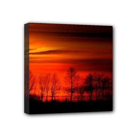 Tree Series Sun Orange Sunset Mini Canvas 4  X 4  by BangZart