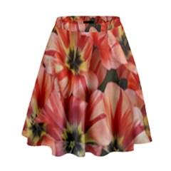 Tulips Flowers Spring High Waist Skirt by BangZart