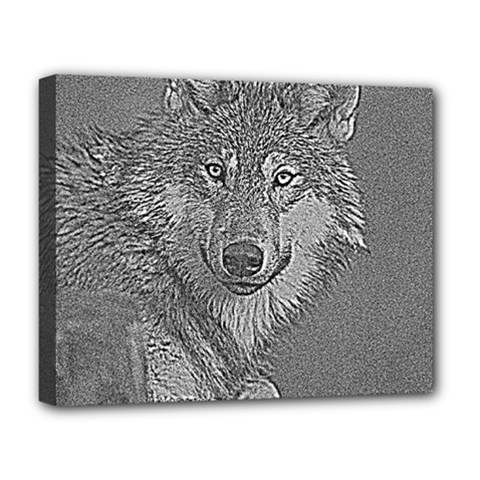 Wolf Forest Animals Deluxe Canvas 20  X 16   by BangZart