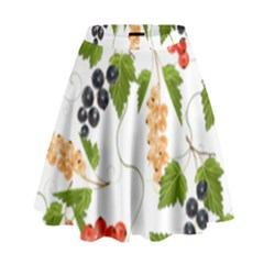 Juicy Currants High Waist Skirt by TKKdesignsCo