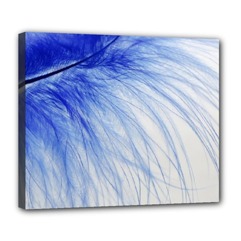 Spring Blue Colored Deluxe Canvas 24  X 20   by Celenk