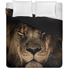 African Lion Mane Close Eyes Duvet Cover Double Side (california King Size) by Celenk