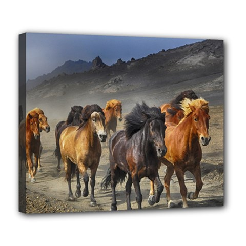 Horses Stampede Nature Running Deluxe Canvas 24  X 20