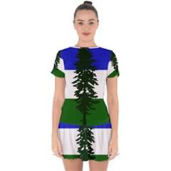 Flag Of Cascadia Drop Hem Mini Chiffon Dress by abbeyz71