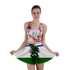 Flag Of Cascadia Mini Skirt by abbeyz71