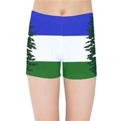 Flag Of Cascadia Kids Sports Shorts by abbeyz71