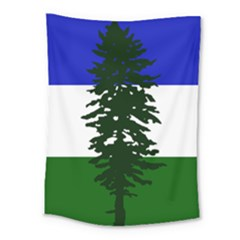 Flag Of Cascadia Medium Tapestry by abbeyz71