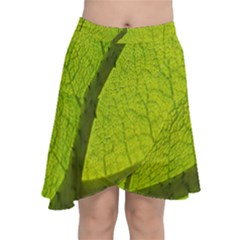 Green Leaf Plant Nature Structure Chiffon Wrap by Nexatart