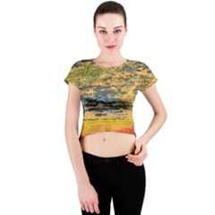 The Framework Drawing Color Texture Crew Neck Crop Top