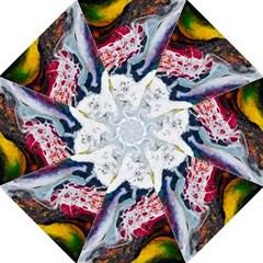 Abstract Art Detail Painting Straight Umbrellas by Nexatart