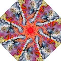 Art Abstract Macro Hook Handle Umbrellas (medium) by Nexatart
