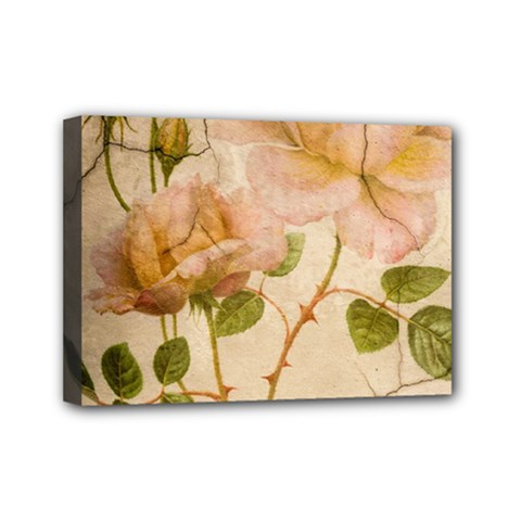 Rose Flower 2507641 1920 Mini Canvas 7  X 5  by vintage2030