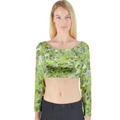 Leaves Fresh Long Sleeve Crop Top by jumpercat