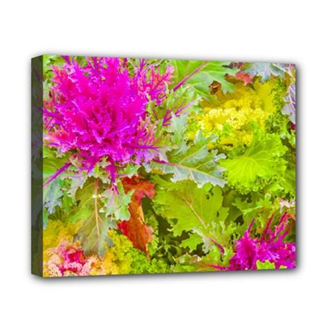 Colored Plants Photo Canvas 10  X 8  by dflcprints