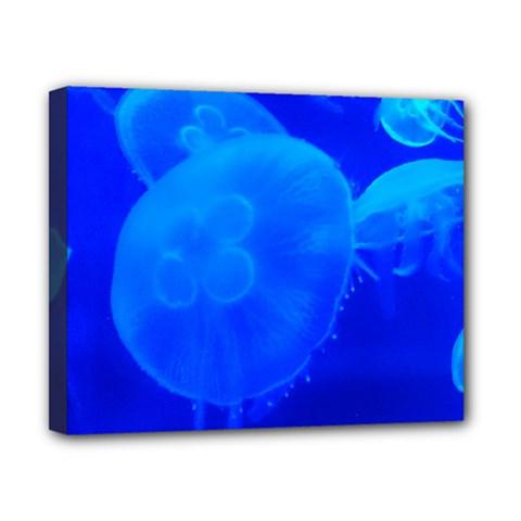 Blue Jellyfish 1 Canvas 10  X 8  by trendistuff