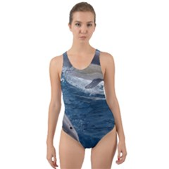 Dolphin 4 Cut Out Back One Piece Swimsuit by trendistuff