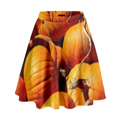 Pumpkins 3 High Waist Skirt