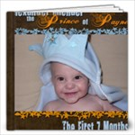 Alexander Michael Payne-First Seven Months - 12x12 Photo Book (20 pages)