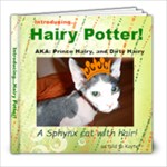 Hairy Potter - 8x8 Photo Book (20 pages)