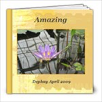 Spring in San Francisco - 8x8 Photo Book (20 pages)