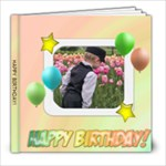 Happy Birthday Party Sample Book - 8x8 Photo Book (20 pages)