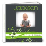 Jax 9-12 months - 8x8 Photo Book (20 pages)