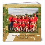 baseball - 8x8 Photo Book (20 pages)