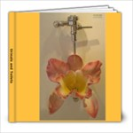 Urinals and Toilets - 8x8 Photo Book (20 pages)