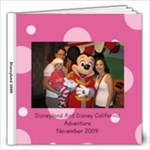 Disneyland 2009 12x12 - 12x12 Photo Book (20 pages)