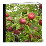 apple picking - 8x8 Photo Book (20 pages)