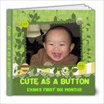 Evan s first six months - 8x8 Photo Book (20 pages)